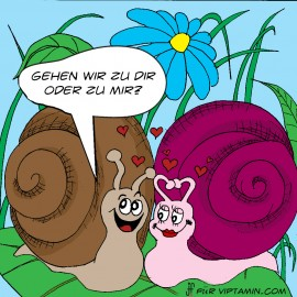 cartoon-verliebte_schnecken_farbig_1000x1000px_fb-tw